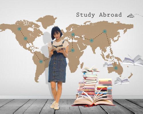 天津美国海外插班学习计划