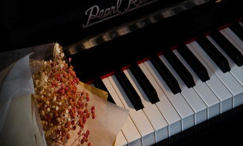 深圳成人钢琴培训课程