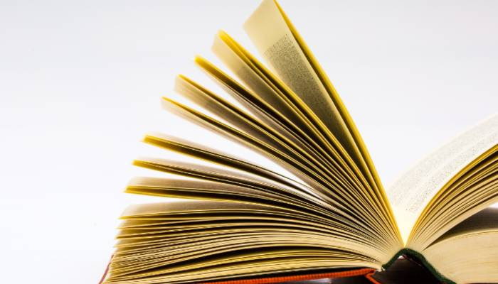 宁波小学三年级语文专项辅导补习班